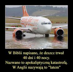 Demotywatory.pl Funny Memes, Hilarious, Jokes, Polish Memes, Life Humor, Haha, Sayings, Anime, Historia