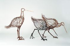 Birds depicted in their natural state