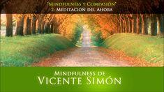 CD1 02 meditacion del ahora