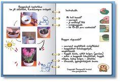 INFOGRAFIKÁK - gazigazito.hu 3c, Plants, Gardening, Lawn And Garden, Plant, Planets, Horticulture