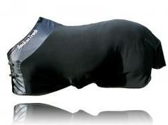 Back on Track Therapeutic Fleece Horse Blanket - one of the BEST things I own!