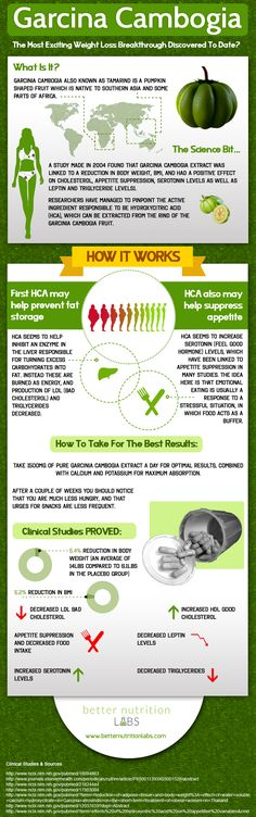 Is Garcinia Cambogia Effective? Find out how it works with our infographic
