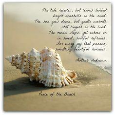 So pretty..... Ocean poem. Something left behind.