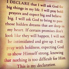 I declare by Joel Osteen