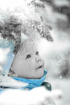 Adorable!! The  Beauty of Snow!