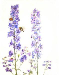 Fleurs des pensees tatouage pinterest recherche - Tatouage pensee fleur ...