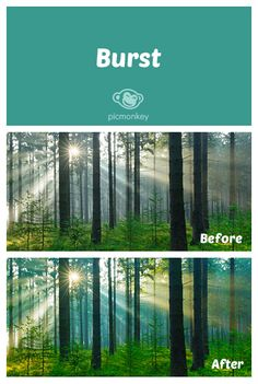 Add color vibrancy to your photo while enhancing the cooler tones within it, using the Burst effect.