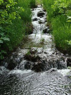 camden MN state park photos - Google Search