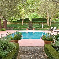 1000 Images About Poolside On Pinterest Pools Italian Cypress Trees And Garden Pool