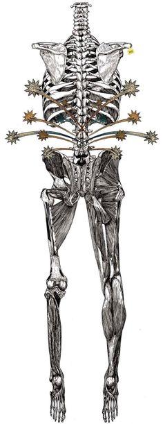 Body illustrations 2 by Wataru Yoshida, via Behance