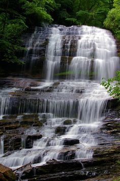 Pearson's Falls near Tryon and Saluda, North Carolina - a beautiful waterfall!:  via @asheville