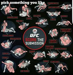 Submission in mma