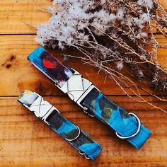 Our latest release! Blue Floral Dog Collar is available now! Check out our collection at www.thecandydogs.com #dogaccessories #dogaccessoriesstore #petshop #dogshop #dogcollar #dogcollarideas #dogfashion #cotton