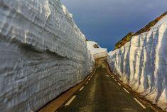 50 razões pelas quais a Noruega deve ser seu próximo destino de viagem 15