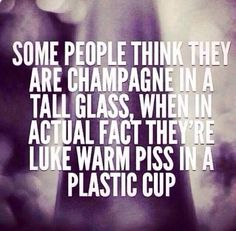 Some people think they are champagne in a tall glass, when in actual fact they're Luke warm piss in a plastic cup. One of the best sayings ever! ✨ so damn true and a good way to knock somebody down a couple of feet. more like a mile. Great Quotes, Quotes To Live By, Me Quotes, Funny Quotes, Inspirational Quotes, Karma Quotes, Woman Quotes, Just In Case, Just For You