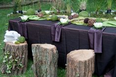this is Princess and the Frog theme but I really like this for outdoor seating