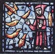 Må den helige Franciskus av Assisi beskydda vår vackra natur!