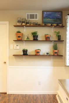 herb-wall-24-of-301
