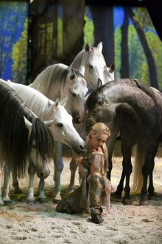 Cavalia! We just got our tickets!!!