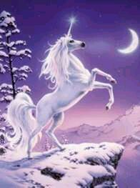 Purple unicorn posters