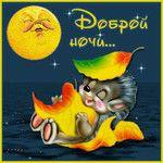 Gif анимация Анимашка доброй ночи Спокойной ночи анимационные гиф картинки и открытки поздравления
