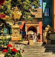 Pécs Heart Of Europe, Budapest Hungary, Eastern Europe, Homeland, Countryside, Beautiful Places, Places To Visit, The Incredibles, Mansions
