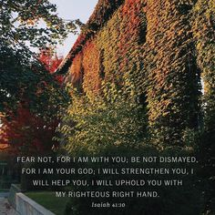 """When I am anxious about some risky new venture or meeting I battle unbelief with one of my most often-used promises: Isaiah 41:10.  The day I left for three years in Germany my father called me long distance and gave me this promise on the telephone. For three years I must have quoted it to myself five hundred times to get me through periods of tremendous stress.  When the motor of my mind is in neutral the hum of the gears is the sound of Isaiah 41:10.  When I am anxious about my ministry…"