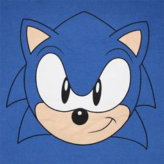 32 Best Sonic The Hedgehog Images Sonic The Hedgehog Sonic Hedgehog Birthday