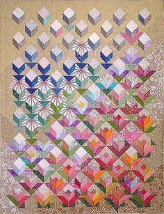 Evolution Quilts from Jane Blair Quilts - Still Crazy After All These Years