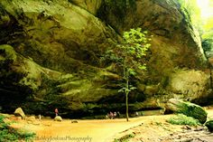 Ash Cave Hocking Hills Ohio. Ashley Jenkins Photography