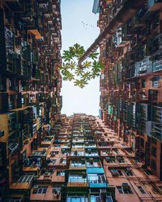 Quarry Bay - Hong Kong Framing and Perspective Beautiful World, Beautiful Places, Strange Places, Skyline, City Landscape, China Travel, Adventure Travel, Architecture, Places To Go