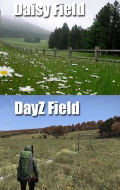 Inflection is important. #Punday #DayZ