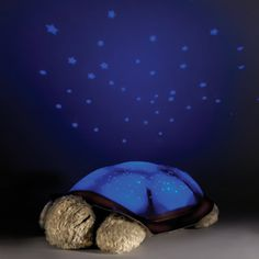 The Constellation Projecting Turtle Night Light - Hammacher Schlemmer.  This is freaking adorable.