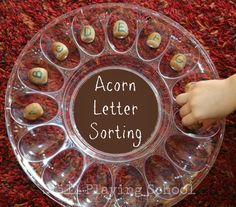 Acorn Letter Sorting from Still Playing School