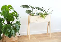 12 Extraordinary Diy Plant Stands Plant stands are very critical as far as decoration is concerned people do observe the plant stand and it has a considerable impact on t. Plant Box, Diy Plant Stand, Wood Planter Box, Wood Planters, Wooden Plant Stands, Bois Diy, Do It Yourself Projects, Diy Interior, Plant Holders