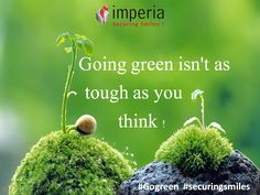 Going #green isn't as tough as you think. Slowly make the move by making one easy change each week of the year. Here are the 52 ideas to #gogreen