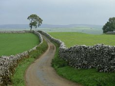 Rural Landscape and Road, Yorkshire, England, United Kingdom, Europe Photographic Print by Woolfitt Adam at AllPosters.com