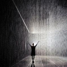 Museum of Modern Art | The Rain Room Installation
