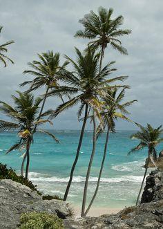 Beautiful beach on the East Coast of Barbados