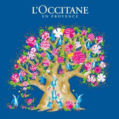 Loccitane, anything from this store, I would love love love