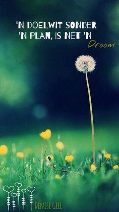Mini-landscape Flowers, grass, dandelions, depth of field Depth Of Field Photography, Bokeh Photography, Dandelion Wallpaper, Flowery Wallpaper, Iphone 5s Phone Cases, Iphone Case, Wallpapers En Hd, Iphone 5 Wallpaper, Phone Backgrounds
