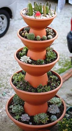 100 Beautiful DIY Pots and Containers Garden Ideas - Diyg schöne DIY Töpfe und Container Garten Ideen – Diygardensproject.live – Wohnaccessoires 100 beautiful DIY pots and containers garden ideas Diygardensproject. Succulent Gardening, Cacti And Succulents, Garden Pots, Organic Gardening, Container Gardening, Gardening Tips, Succulent Ideas, Vegetable Gardening, Gardening Gloves
