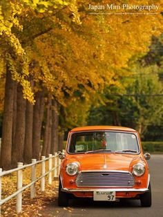 Classic Minis - jazzkramer:     JAPAN MINI Photography