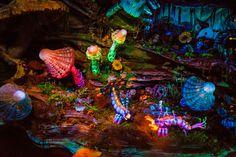Tips for Photographing Disney Rides - Disney Tourist Blog