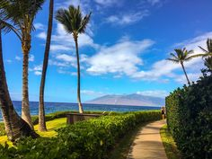 No amusement park rides or boisterous crowds to be found along this two-mile stretch, but you will be graced with incredible views of the Pacific. During your walk, you'll be able to snap pictures of the Molokini, Kahoolawe, and Lanai volcanoes or stop at one of five coves for a dip in the picturesque waters.