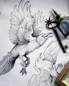 Hienot jalat ja pyrstö You are in the right place about Birds Drawing realistic Here we offer you th Bird Drawings, Animal Drawings, Tattoo Drawings, Art Du Croquis, Black Bird Tattoo, Tattoo Bird, Bird Sketch, Kunst Tattoos, Raven Art