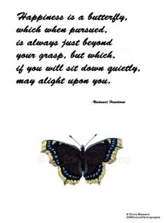 Happiness Is A Butterfly-   Nathaniel Hawthorne Quote   Inspirational Quotes   Butterflies   Vintage Illustrations   -Erica Massaro, EDMPoetryPhotography on Etsy.