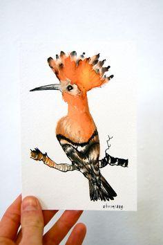 Upupa realizzata con inchiostro di china su carta acquarello  BIRDADAY - Paesi Bassi © Saldi Breton