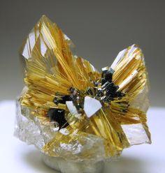 Dois cristais de quartzo incolor com agulhas Rutile dourados no e dentro deles. existem também chapas de hematite no centro. O rutilo irradia do centro da hematita.  Novo Horizonte, Brasil