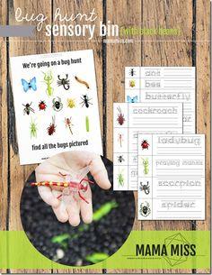 Bug Hunt Sensory Bin   @mamamissblog #bugs #sensorybin #homeschool